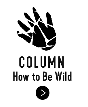 COLUMN How to Be WILD